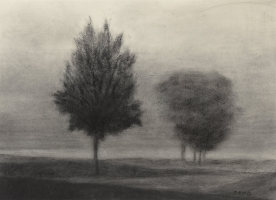 "<h5>Between the Trees</h5><p>20 1/4"" x 13 1/4""</p>"